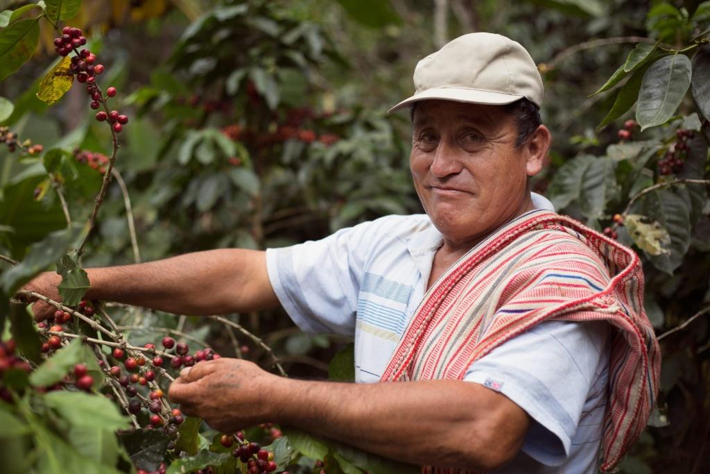 Fairtradekoffie Norandino Peru Oxfam